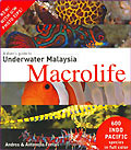 A diver's guide to underwater Malaisya macrolife