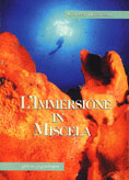 L'immersione in miscela