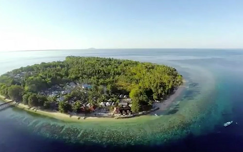 Super offerta sulawesi kuda laut boutique dive resort scubaportal marketplace - Kuda laut boutique dive resort ...